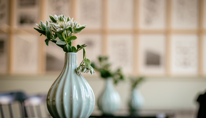 Inred hemmet med vackra växter i snygga vaser